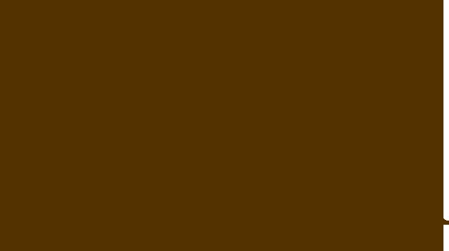 Hospital San Angel